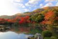 京都新聞写真コンテスト 天龍寺名物朝紅葉