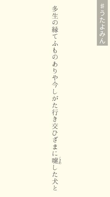 f:id:isachibi59:20181231211004j:image