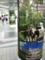 仙台駅地下自由通路の柱がロイヤルパークホテルだらけ