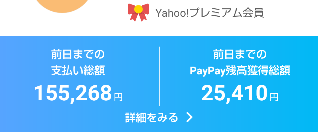 PayPay利用履歴