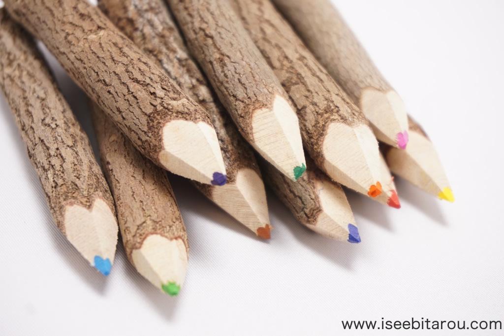 木の枝の色鉛筆