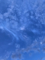 20210626153139