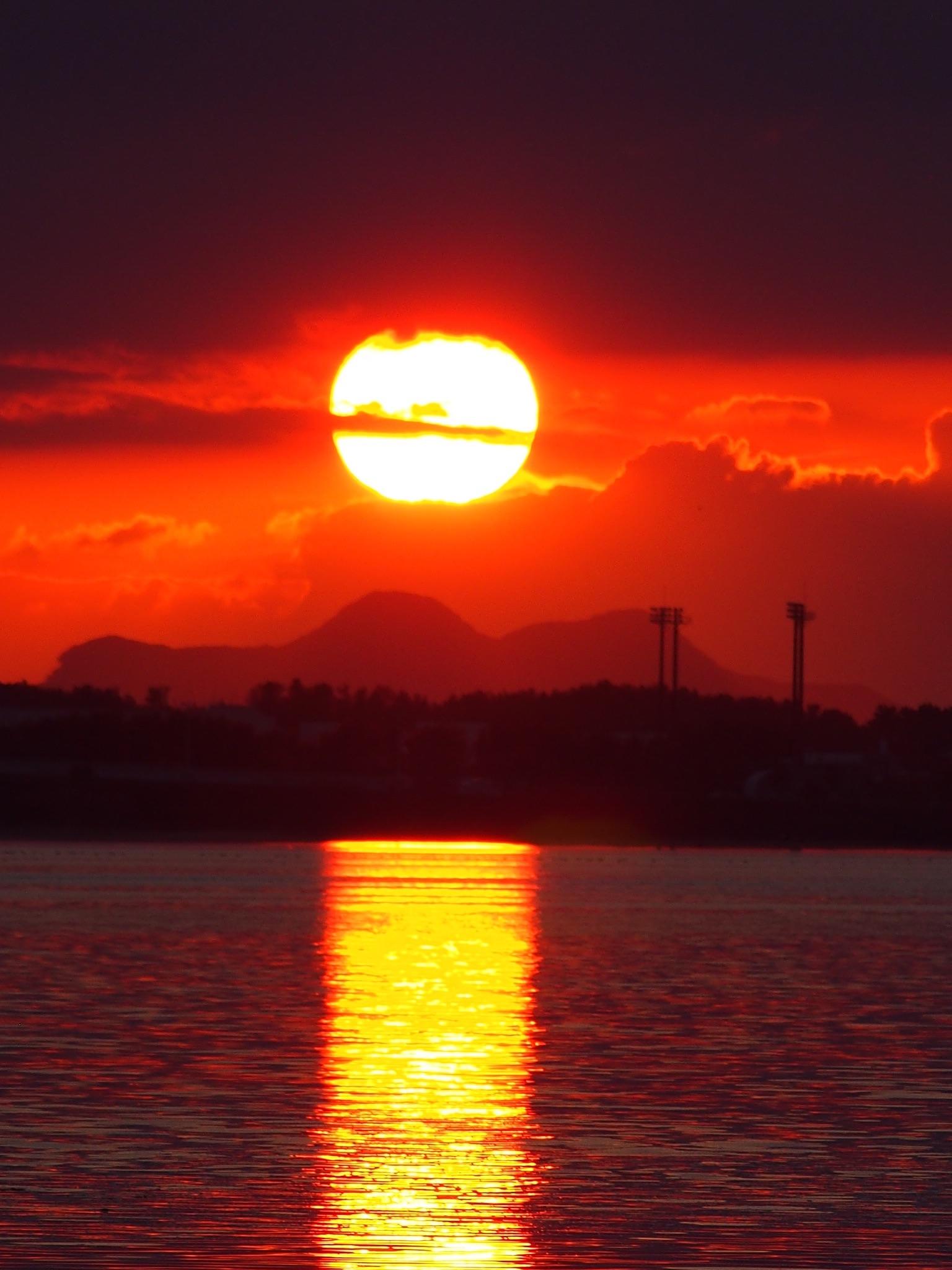f:id:ishibahomare:20200322014652j:image