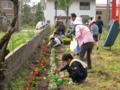 戸狩遊園地の花壇の植え付け