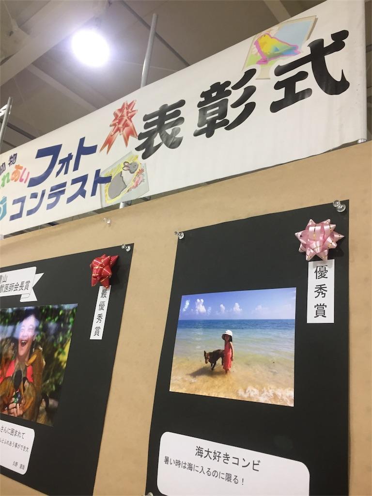 f:id:ishigakijimaumahiroba:20161121052633j:image