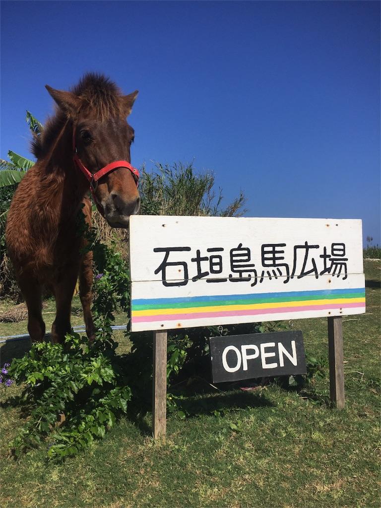 f:id:ishigakijimaumahiroba:20161231223319j:image