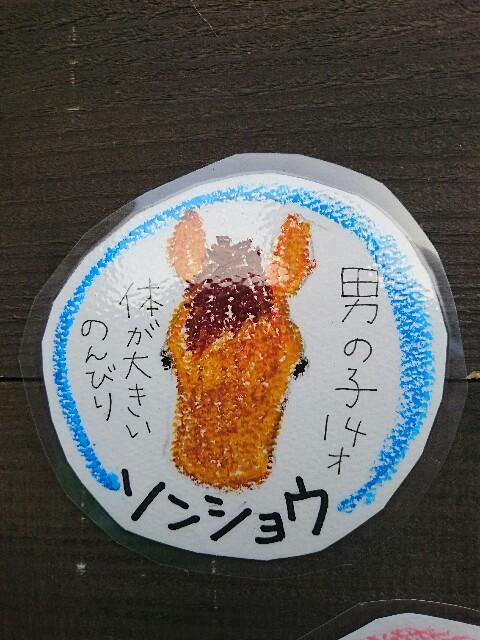 f:id:ishigakijimaumahiroba:20170307234434j:image