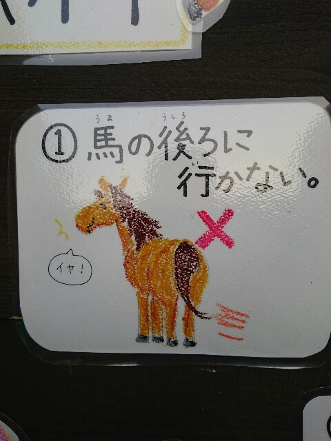f:id:ishigakijimaumahiroba:20170307234644j:image