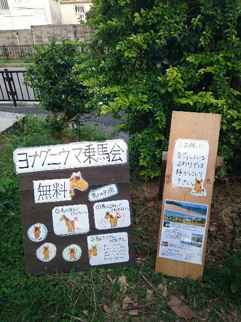 f:id:ishigakijimaumahiroba:20170307234659j:image