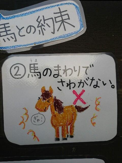 f:id:ishigakijimaumahiroba:20170307234728j:image