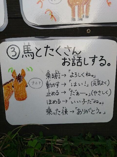 f:id:ishigakijimaumahiroba:20170307234807j:image