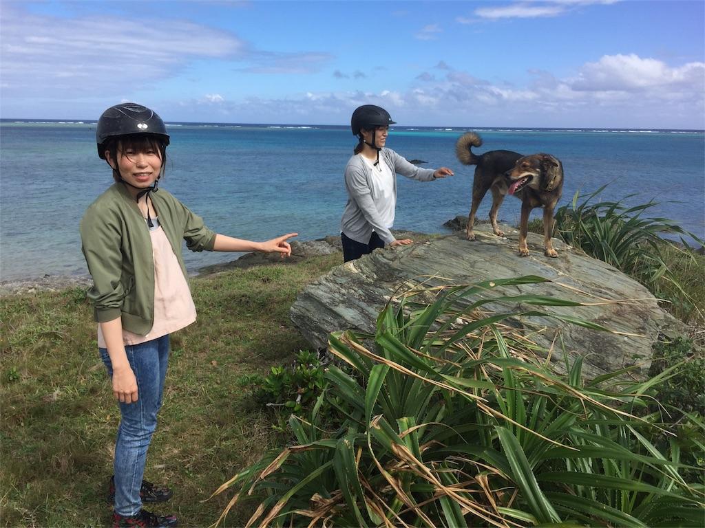 f:id:ishigakijimaumahiroba:20171124134955j:image