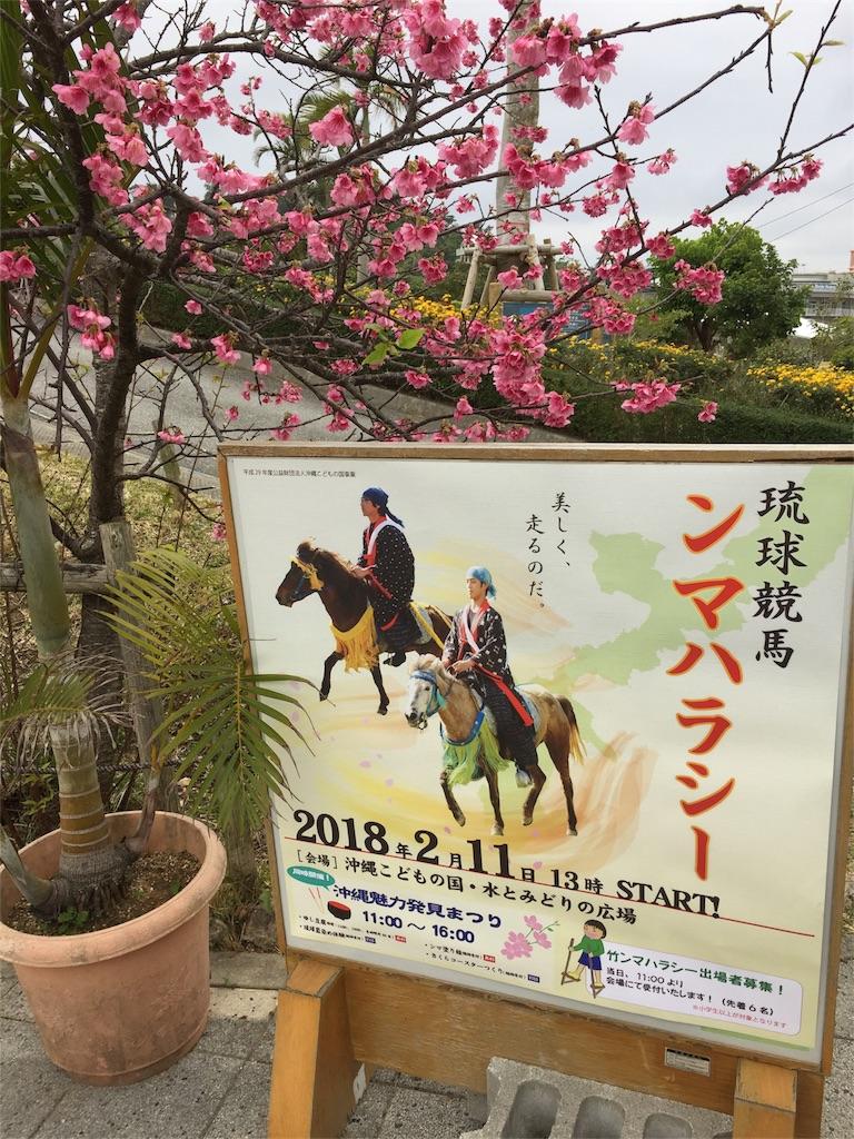f:id:ishigakijimaumahiroba:20180215051847j:image