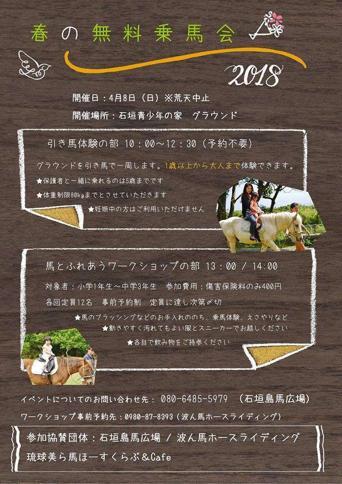 f:id:ishigakijimaumahiroba:20180404234110j:plain