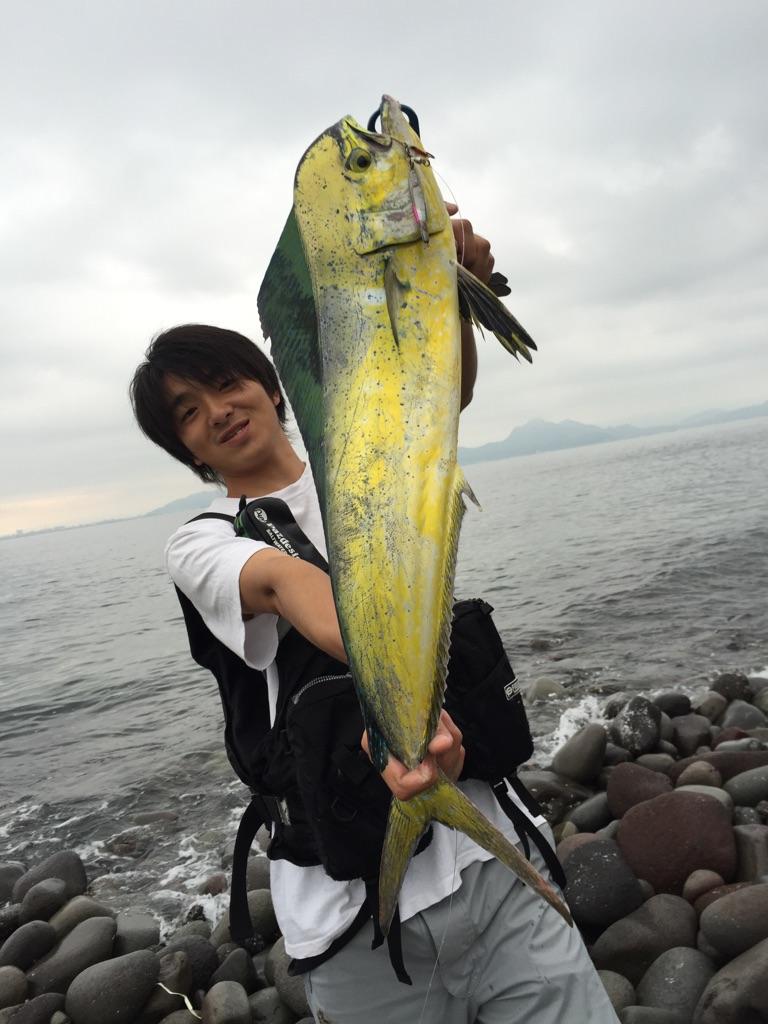 f:id:ishiguronumazu:20160620125252j:plain