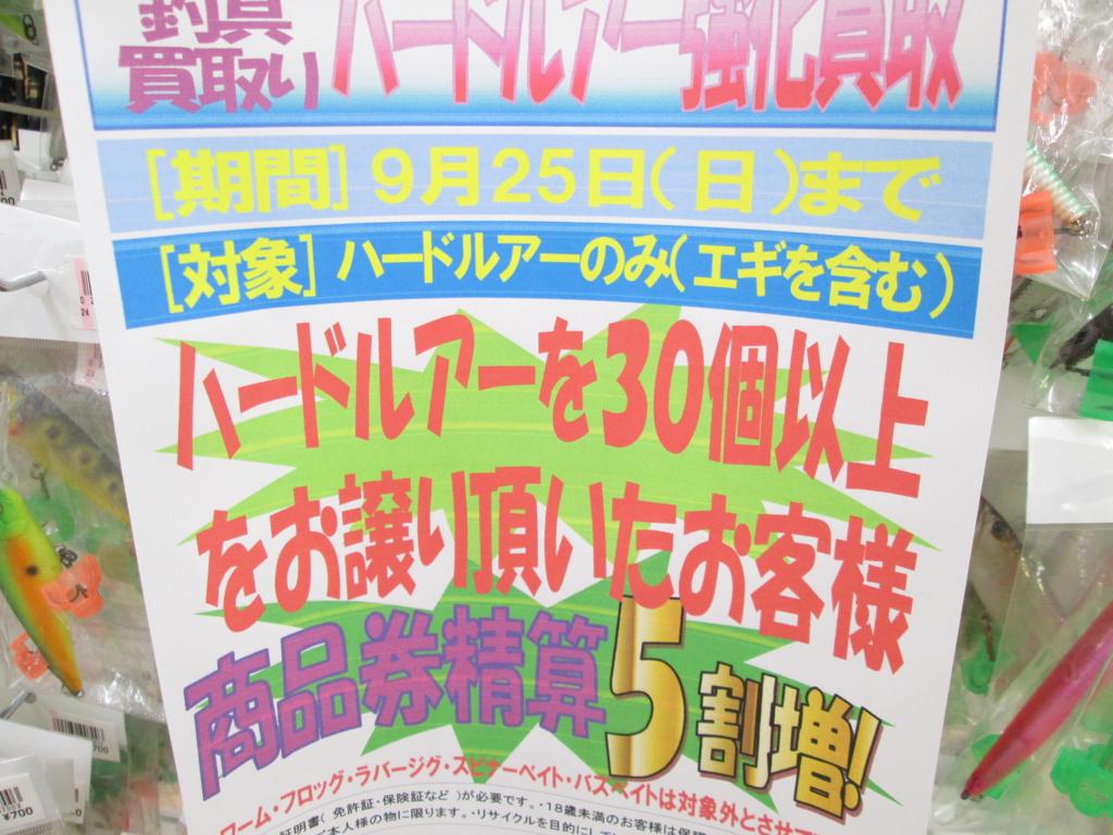 f:id:ishiguronumazu:20160828175306j:plain