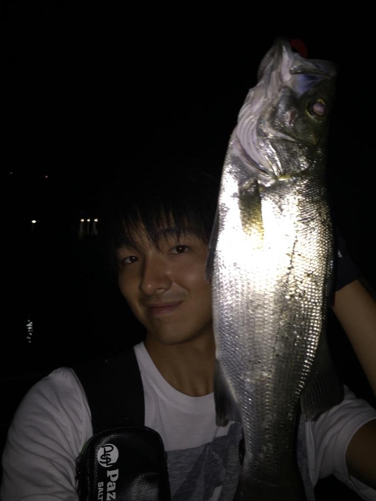 f:id:ishiguronumazu:20160916143837j:plain