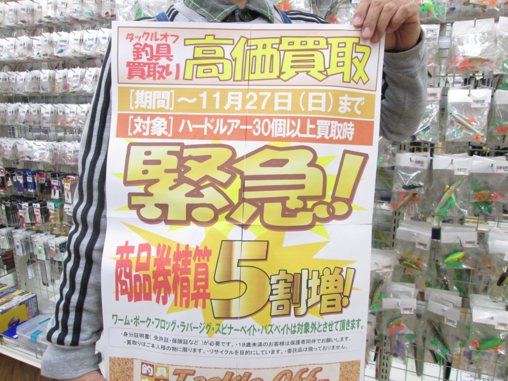 f:id:ishiguronumazu:20161108173443j:plain