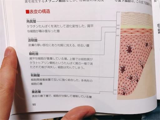 f:id:ishiimachiko141hair:20200126190545j:image