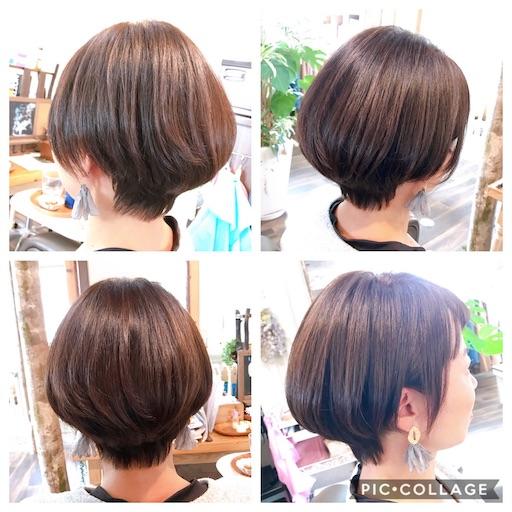 f:id:ishiimachiko141hair:20200203193341j:image