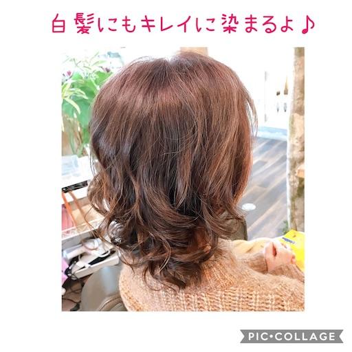 f:id:ishiimachiko141hair:20200203193452j:image