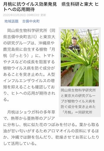 f:id:ishiimachiko141hair:20200401200926j:image