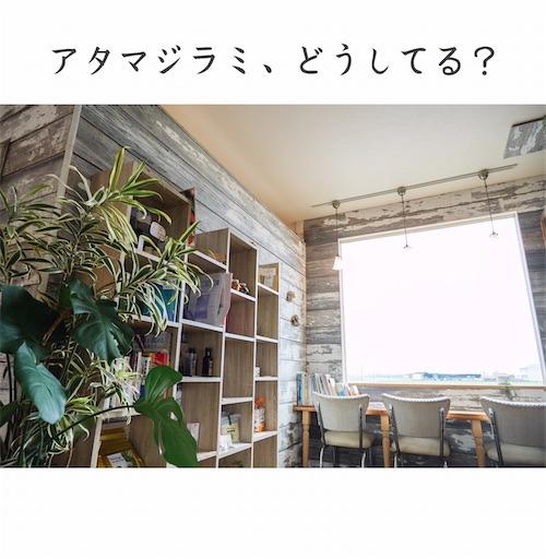 f:id:ishiimachiko141hair:20200512212056j:image