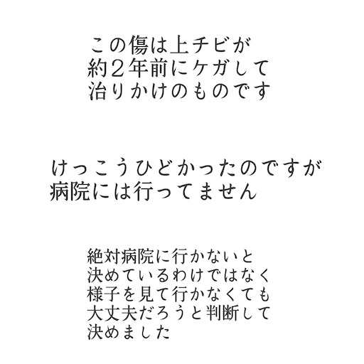 f:id:ishiimachiko141hair:20200516213717j:image