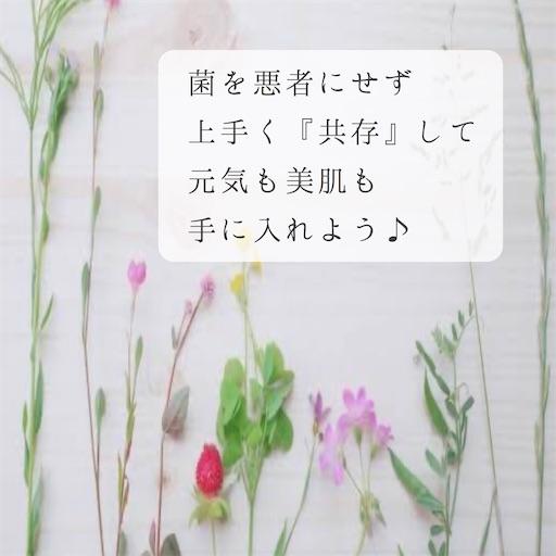 f:id:ishiimachiko141hair:20200529061602j:image