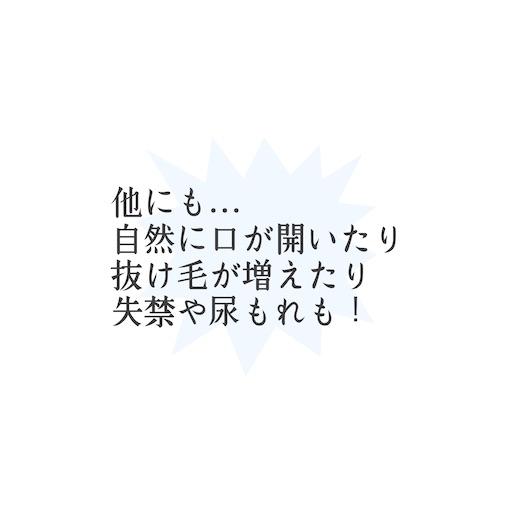 f:id:ishiimachiko141hair:20200602065555j:image