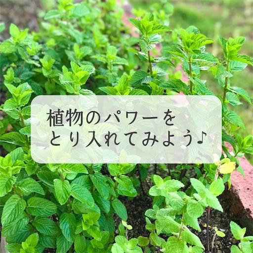 f:id:ishiimachiko141hair:20200628080046j:image