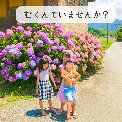 f:id:ishiimachiko141hair:20200711055020j:image