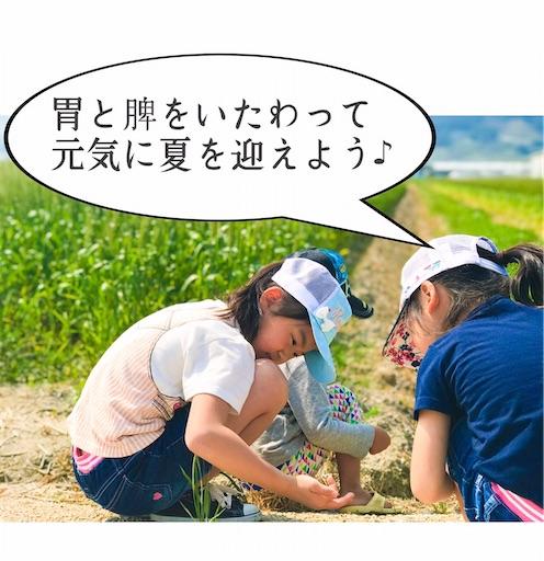 f:id:ishiimachiko141hair:20200711061930j:image