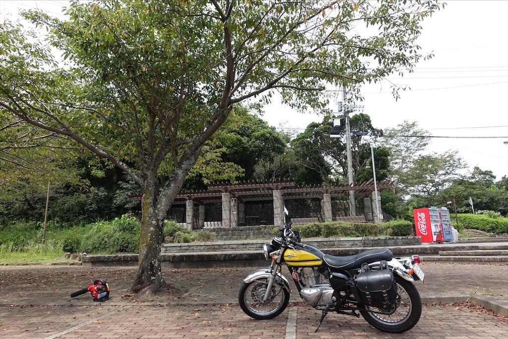 f:id:ishiiruka0421:20210322204737j:image