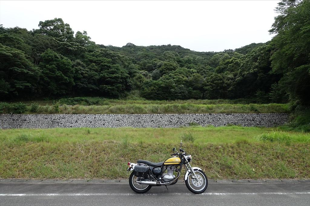 f:id:ishiiruka0421:20210330233451j:image