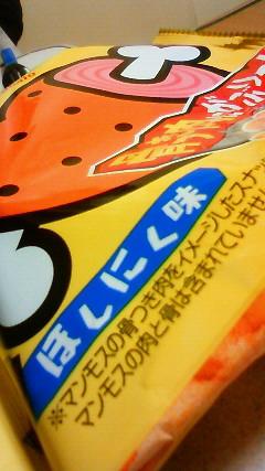 f:id:ishiiyoshito:20110119215600j:image