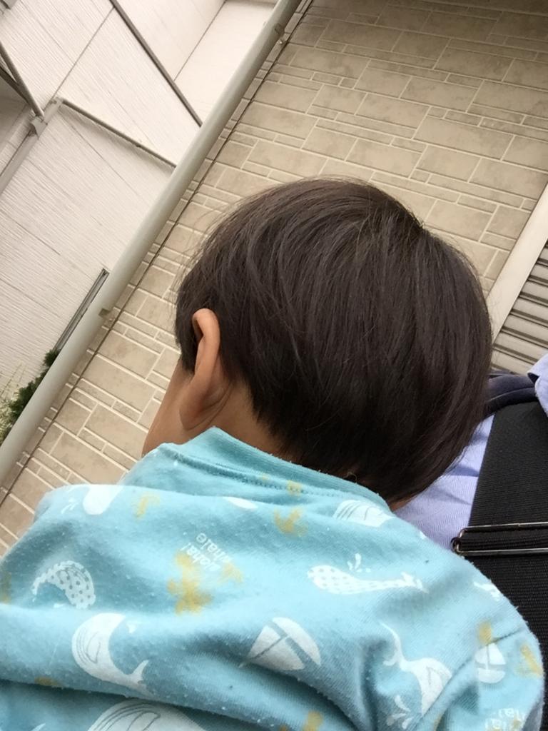 f:id:ishijiro2:20160615082328j:plain