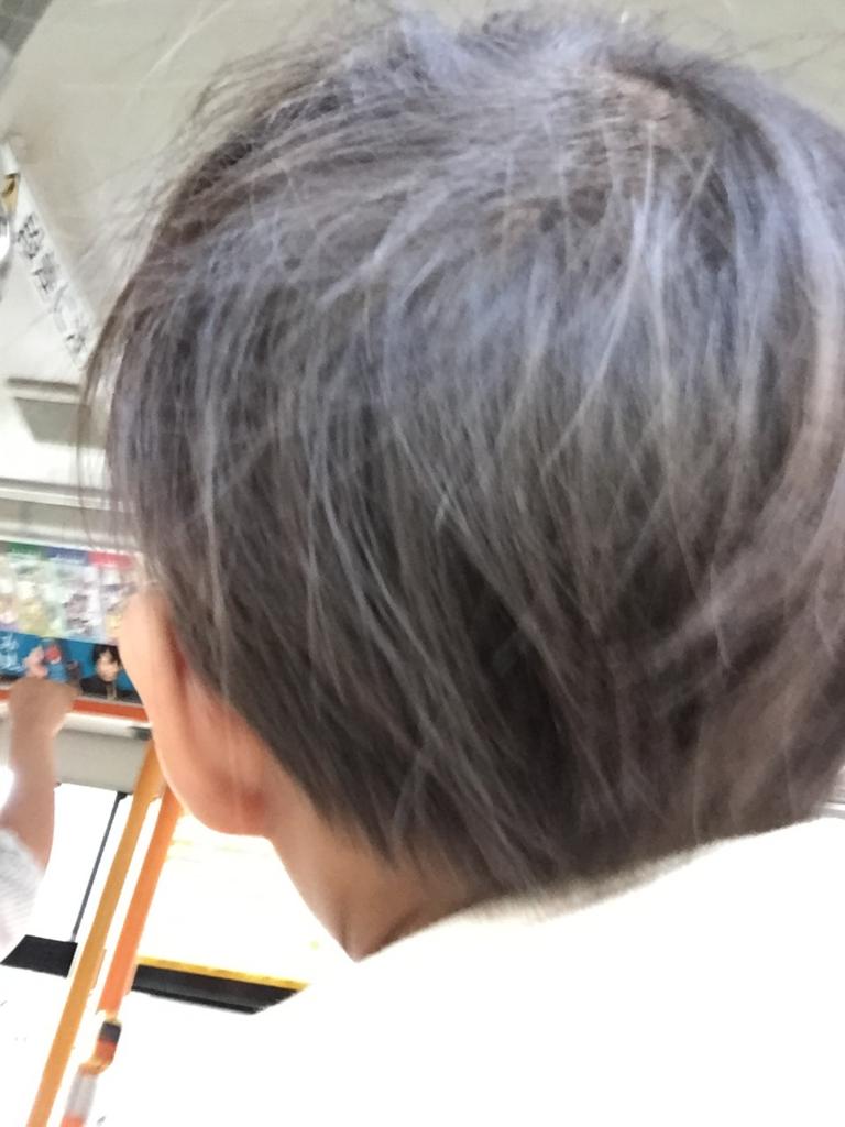 f:id:ishijiro2:20161018081843j:plain