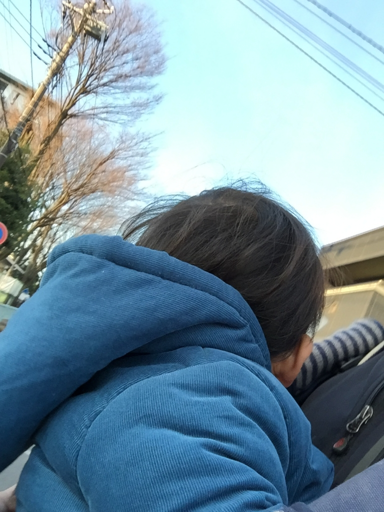 f:id:ishijiro2:20170106080602j:plain