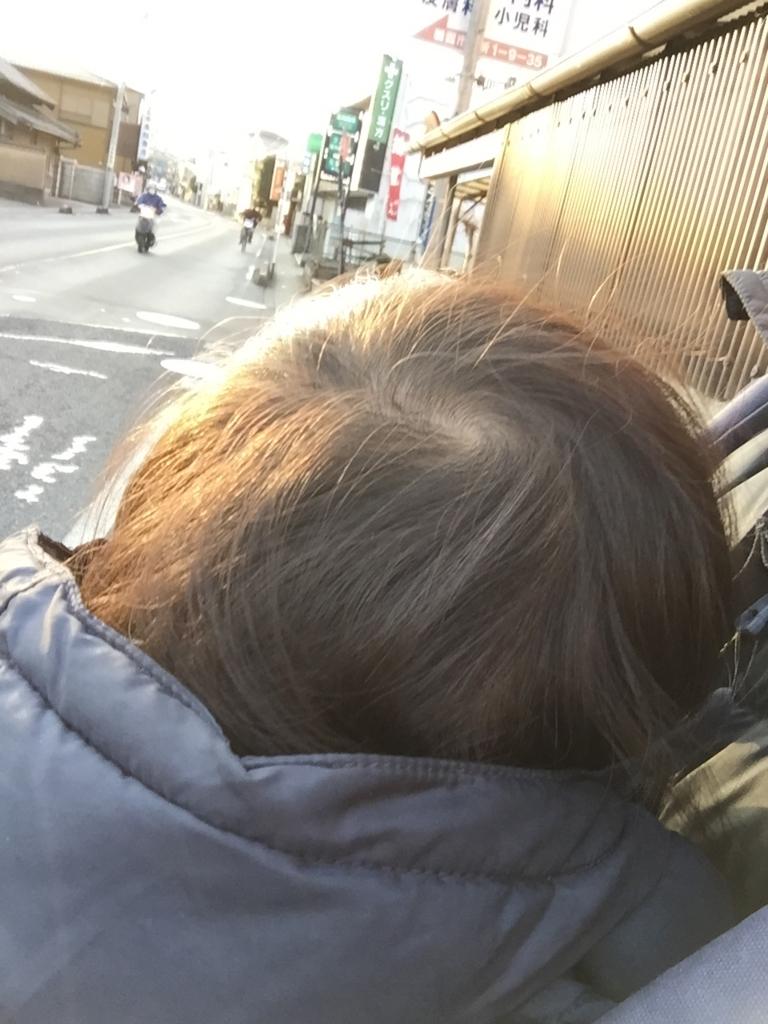 f:id:ishijiro2:20170201080550j:plain