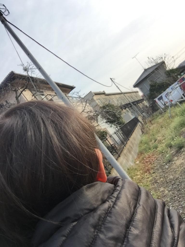 f:id:ishijiro2:20170328083127j:plain