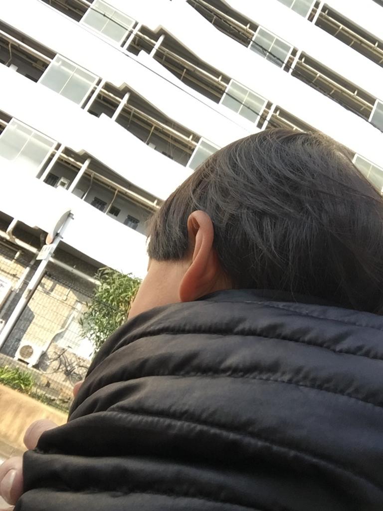 f:id:ishijiro2:20170329075913j:plain