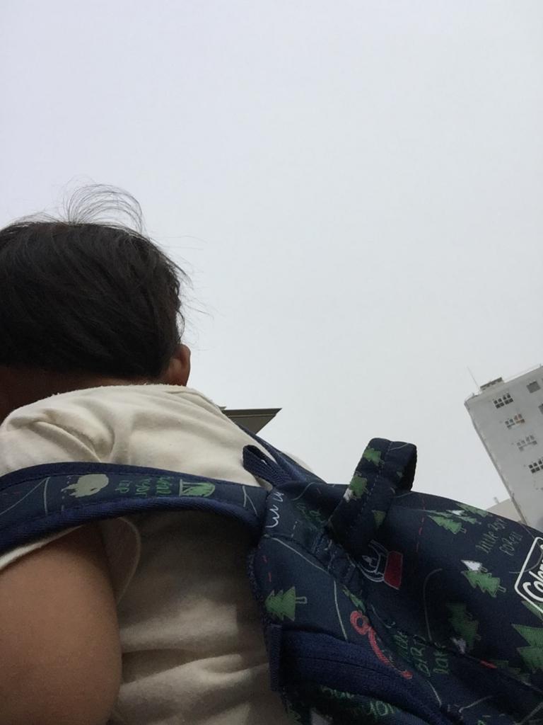 f:id:ishijiro2:20170509075949j:plain