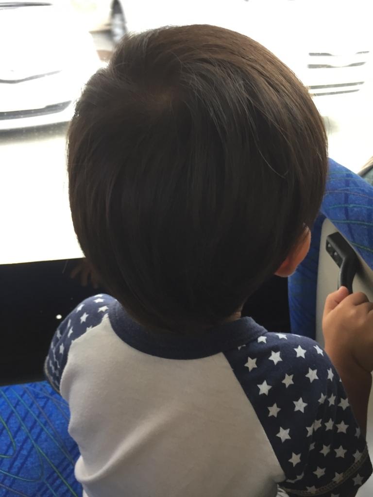 f:id:ishijiro2:20170823080037j:plain