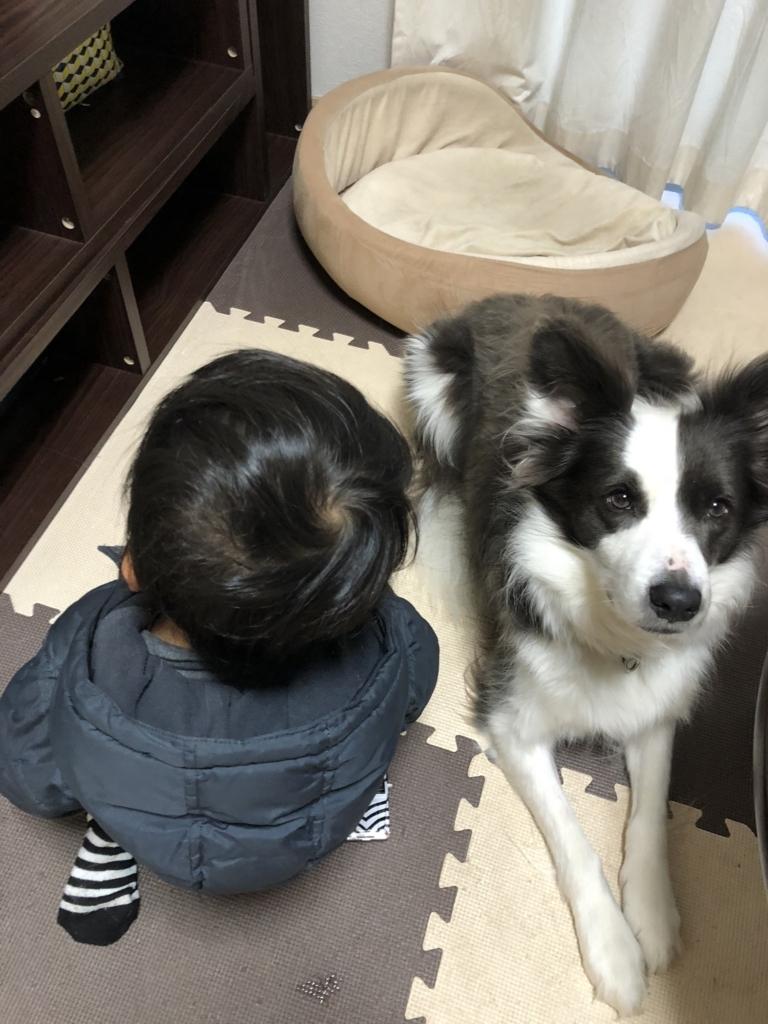 f:id:ishijiro2:20171220074203j:plain
