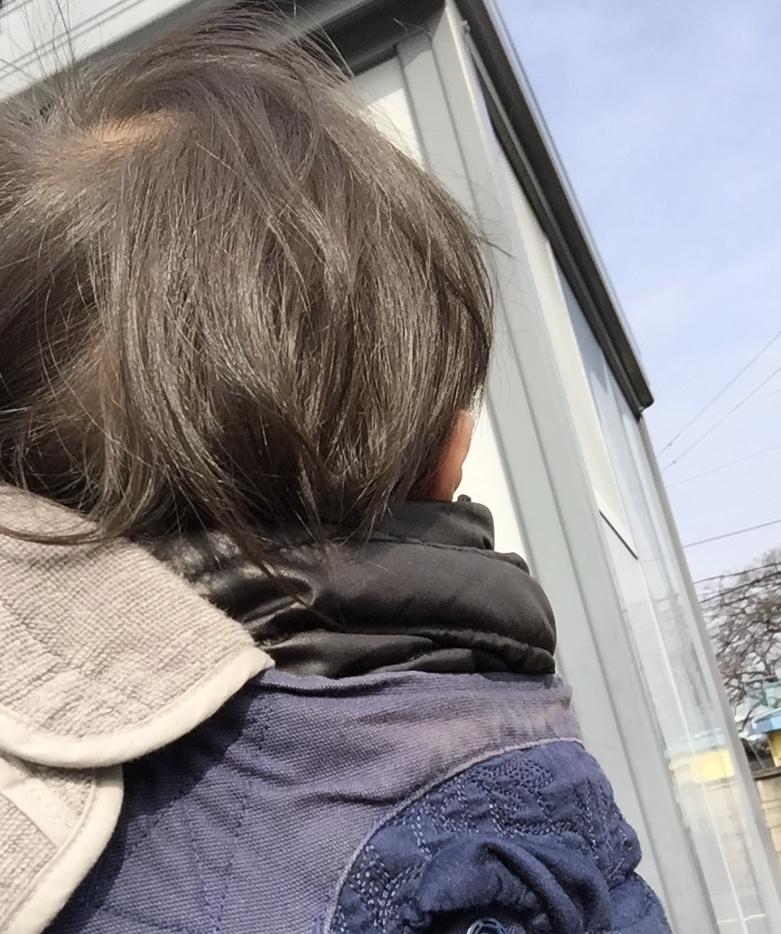 f:id:ishijiro2:20180330080017j:plain