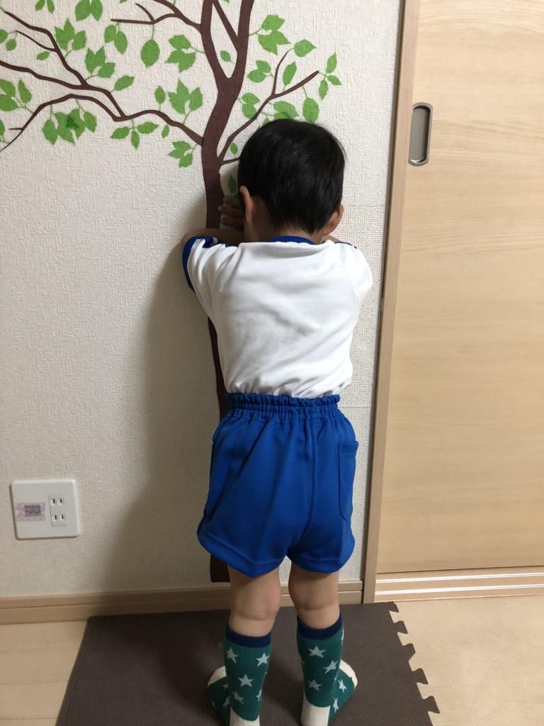 f:id:ishijiro2:20180411073829j:plain
