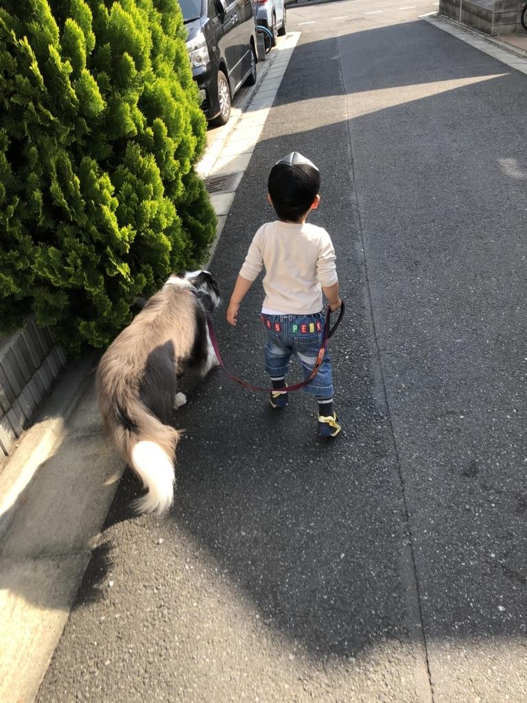 f:id:ishijiro2:20180423074432j:plain