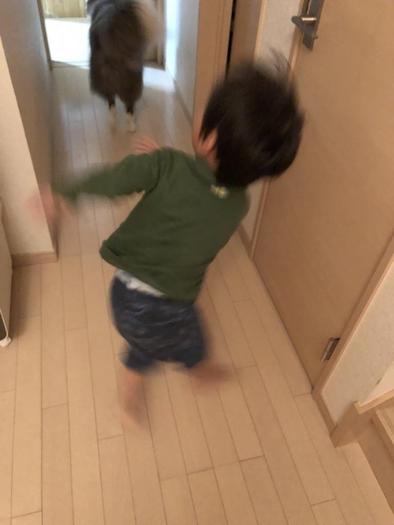 f:id:ishijiro2:20180611074943j:plain