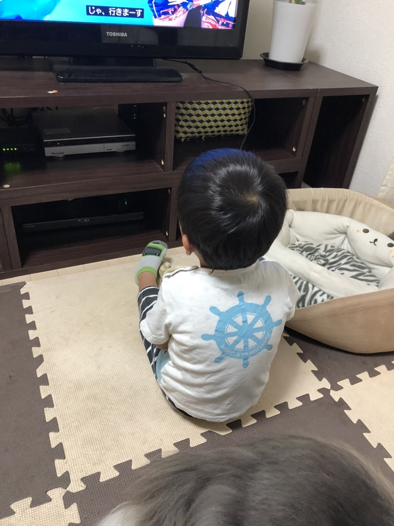 f:id:ishijiro2:20180807071359j:plain